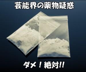 PAK86_pakenikoawakekomugiko[20141103211235_TP_V[1]